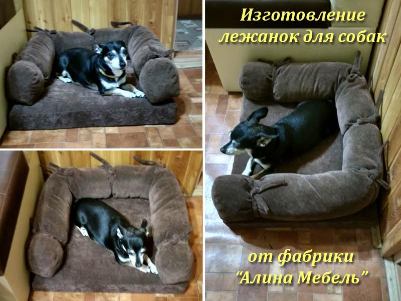 Рулетки для собак любого размера и длины