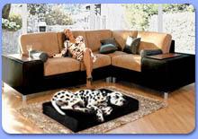 Мебель по фабричным ценам